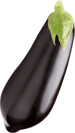 محصولات غذایی رضا